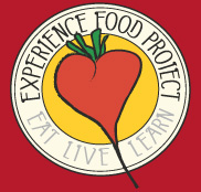 The Experience Food Project