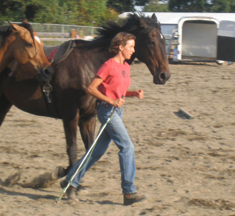 Sus Kellogg is one of the leaders on the island with Natural Horsemanship - that's her at last year's County Fair....
