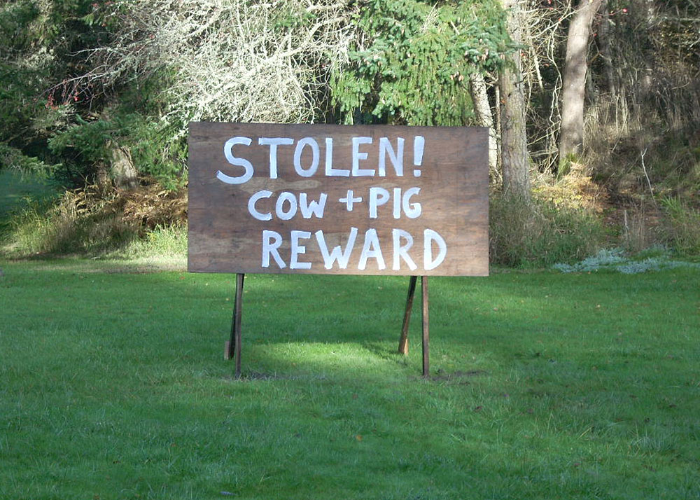 Cow and Pig have been Stolen