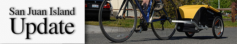 mast-bike-trailer