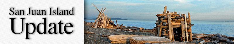 mast-driftwood-house