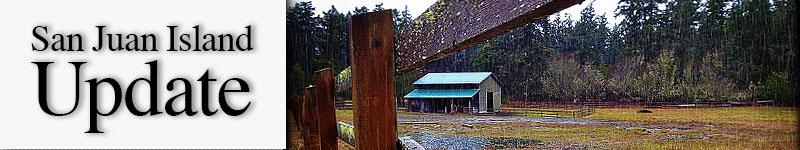 mast-lichen-fence