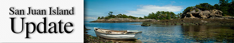 mast-rowboat-sucia