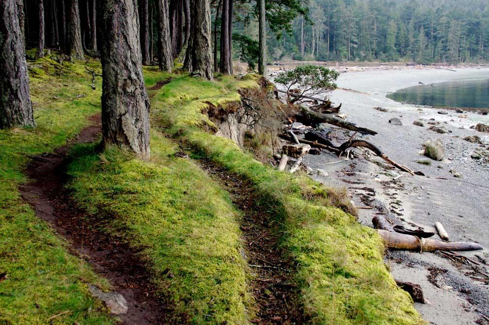 Third Lagoon Trails - John Dustrude photo