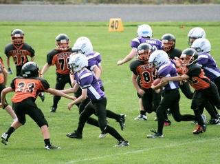 tigers-football