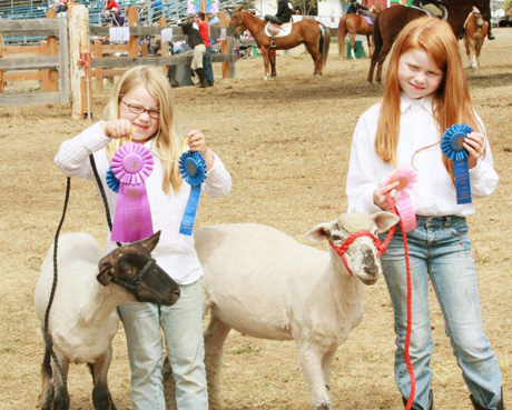 Stella & Lucy Tarte show off the ribbons they got with their sheep Night & Day...photo by Cere Demuth.