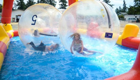 Kids playing like hamsters in the giant, water-ball things
