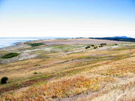 dunes_and_prairie