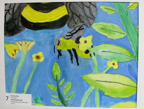 """Watercolor: """"Giant Bumble Bee"""" by Clarissa Felix, Friday Harbor Elementary School"""
