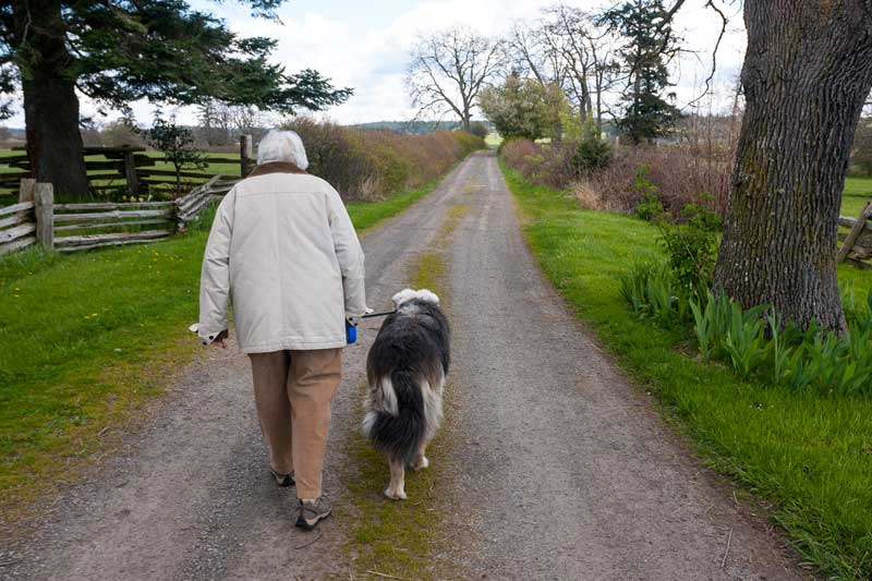 The 1st Annual Dodie Gann Dog Walk is coming up on May 31st - Contributed photo