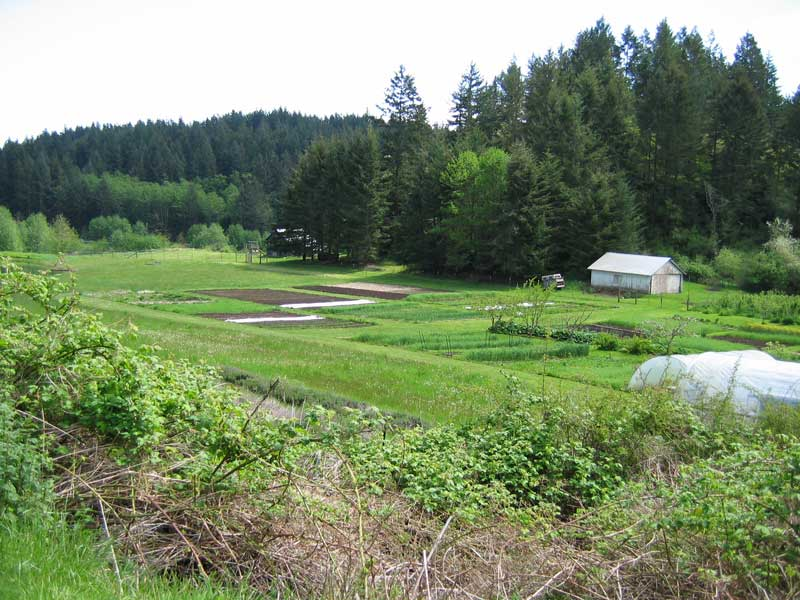 SJ Islands Farm - Click to enlarge - Contributed photo