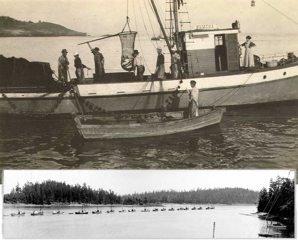Fishing boats in Friday Harbor - Click to enlarge - SJ Historical Museum photo