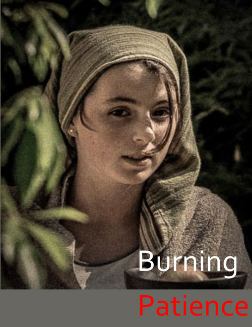 Burning Patience by S.S.I.S. - Contributed image