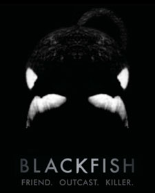 TWM-blackfish-flyer