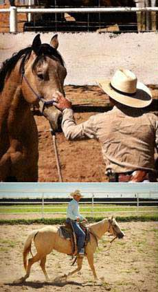 Natural Horsemanship Clinic - Contributed photo