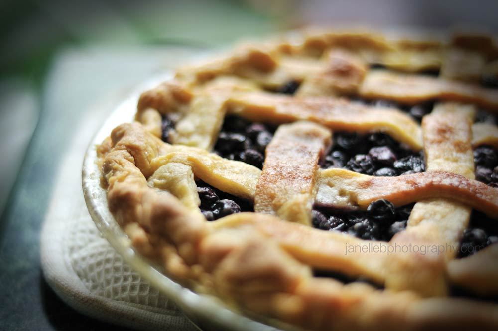 Mmmmmmm!!! Delicious homemade Blueberry Pie! - Photo courtesy of Janelle Bendycki Photography:  http://www.janellebphotography.com/food/
