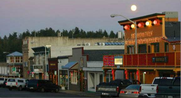 Full moon over downtown Friday Harbor - Tamara Weaver photo