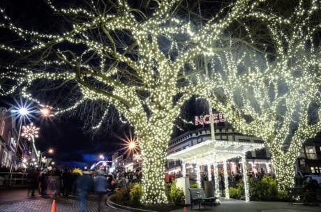 Memorial Park at the tree lighting ceremony - Tim Dustrude photo