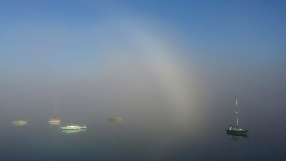 Friday Harbor Fogbow - Mike Martin photo