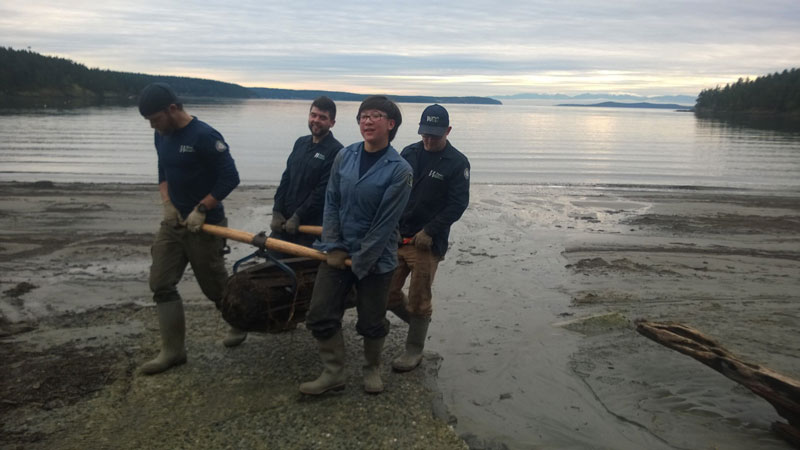 Crews remove creosote logs from local beaches - Contributed photo