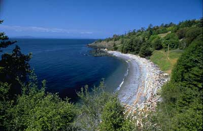 Deadman Bay Preserve, one of several properties of the SJC Land Bank - Steve Horn photo