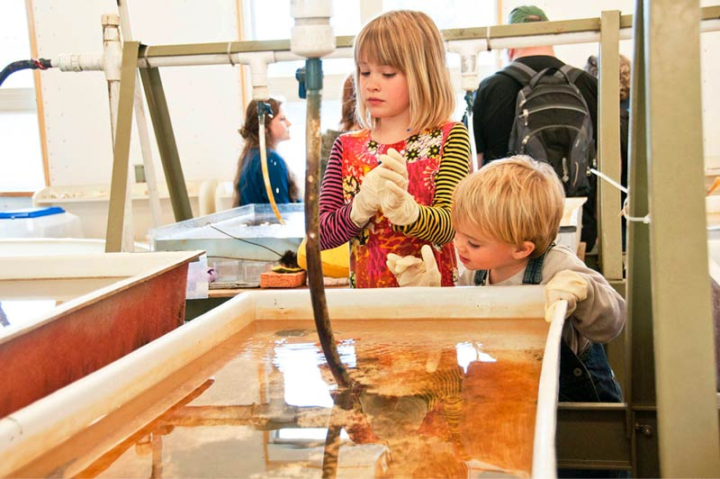 Kids enjoying some hands-on activities at the FHL Open House - Contributed photo