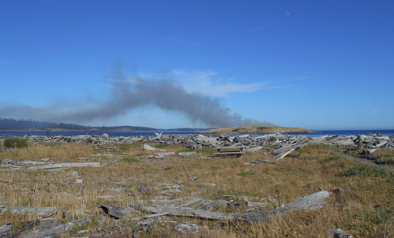 Fire on Goose Island - Contributed photo