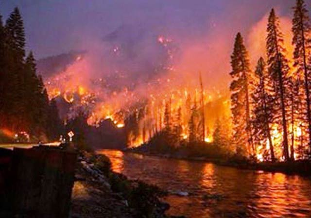 Washington State forest fire - Contributed photo
