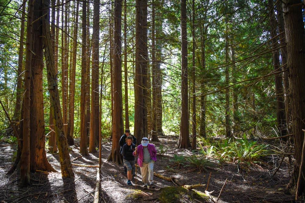 The Cedar Grove Trail at Mitchell Hill - Tim Dustrude photo