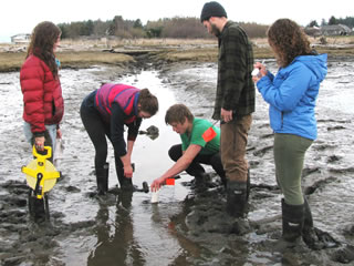 Students sampling coastal marsh - Image courtesy of Kwiaht