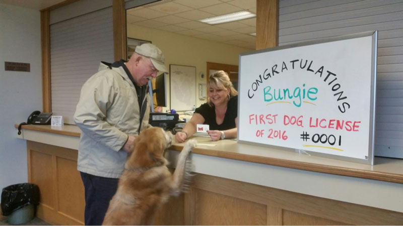 Bungie receives the first Dog License for 2016 - Contributed photo