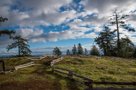 The view toward Friday Harbor from Mount Grant - Tim Dustrude photo