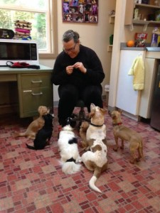 Suzanne and dogs - Contributed photo