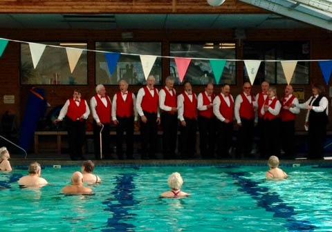 Island Chordsmen Plus at the Pool - Cinda Sue Dow photo