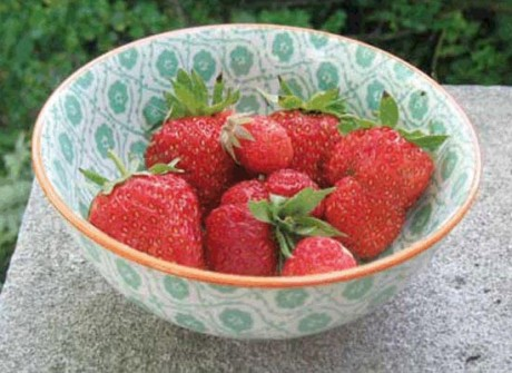 A bowl of Marshall Strawberries - Contributed photo