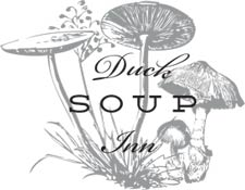 duck-soup-logo