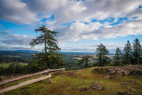 One of the views from the top of Mount Grant - Tim Dustrude photo