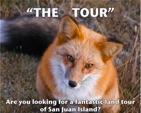 The-Tour-Poster-sm