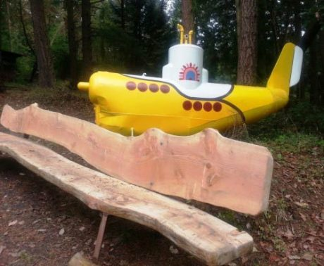 Kevin Roth's Yellow Submarine - Tuckerhouse B&B photo