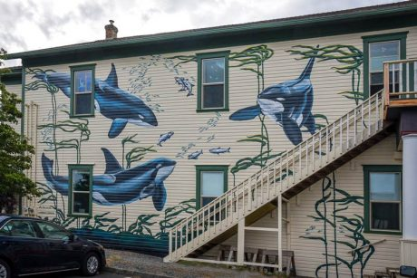 Ya gotta go check out the Whale Museum's new mural - Tim Dustrude photo