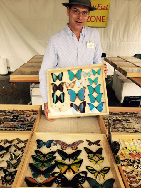 Don Ehlen with insect displays - Contributed photo