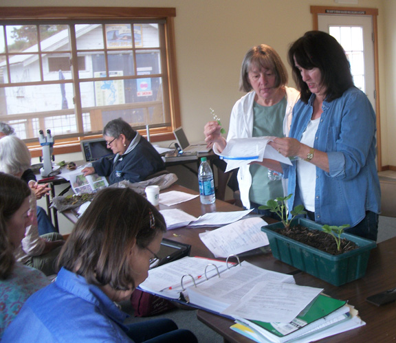Master Gardeners Diagnostic Clinic - Contributed Photo