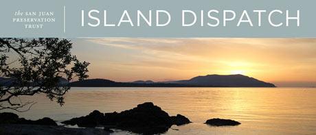 island-dispatch