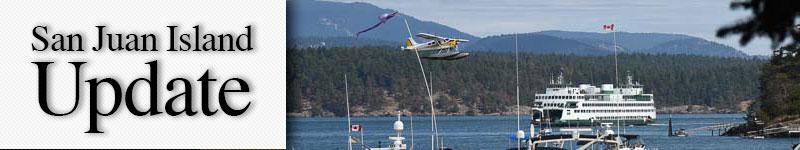mast-busy-harbor