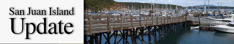 mast-marina-main-dock