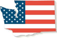 election-flag